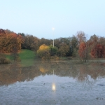 Colori autunnali riflessi nell'area recentemente inondata