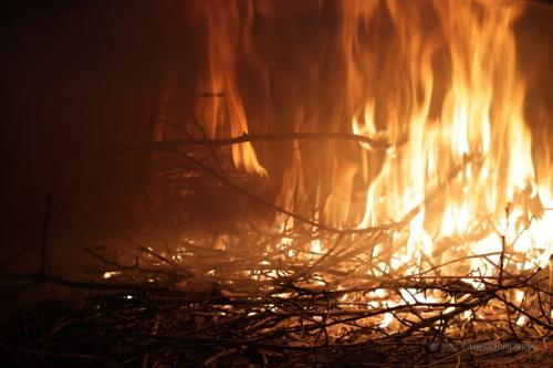 Fuoco nel forno a legna