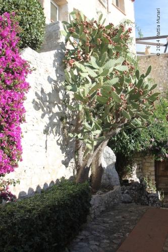 Èze, borgo mediterraneo
