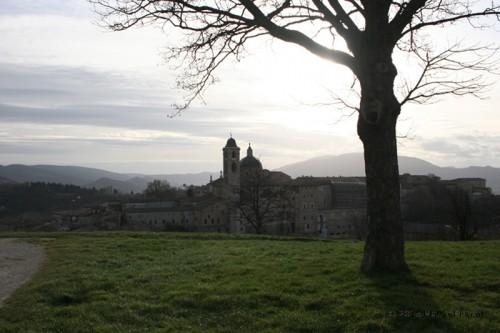 Urbino dalla fortezza Albornoz
